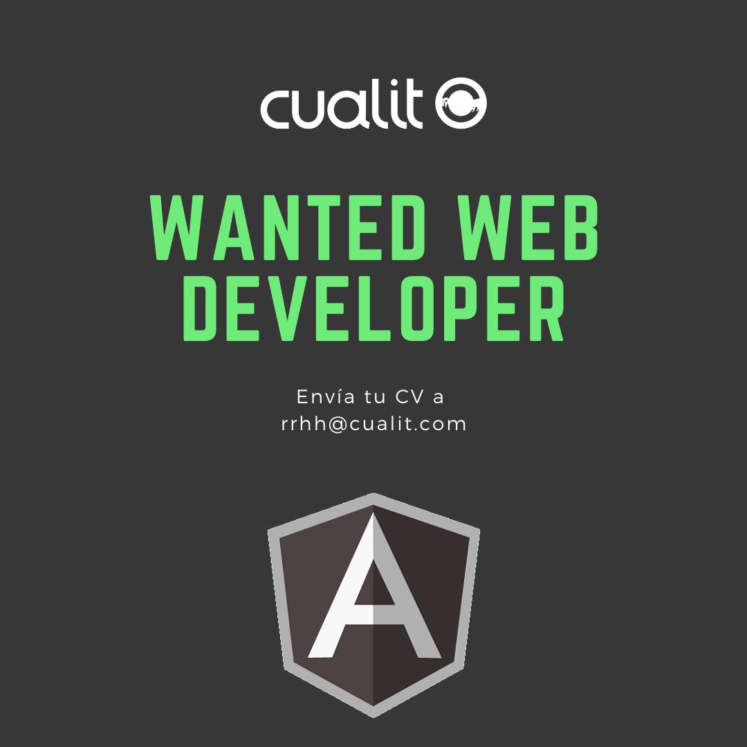 Wanted Web Developer